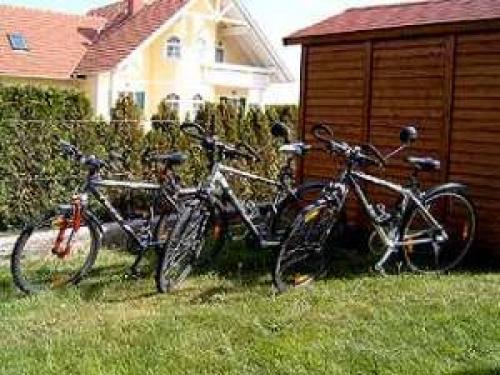 Ferienhaus Tirol#3
