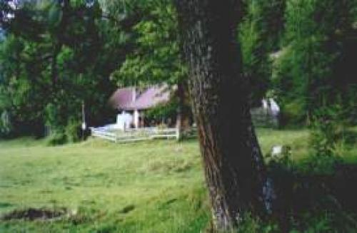 Ferienhütte Stolzalpe#2