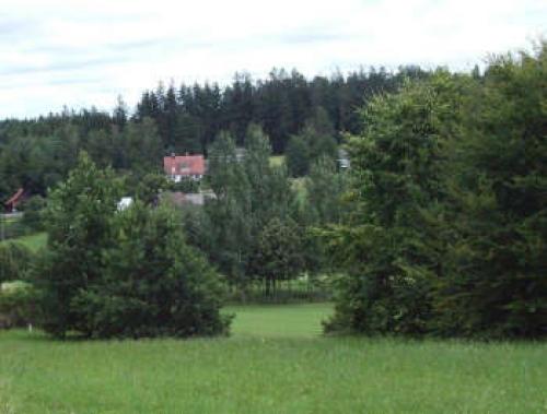 Ferienwohnung Haus Angelmoos#9