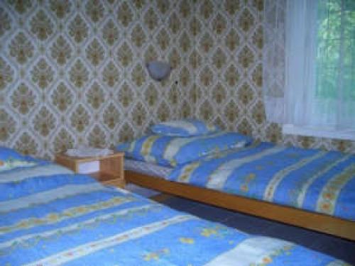 Ferienhaus in Fonyod#4