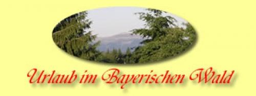 Ferienwohnung im Ferienhaus Hilde in Spiegelau-Beiwald Bayerischer Wald Niederbayern#4