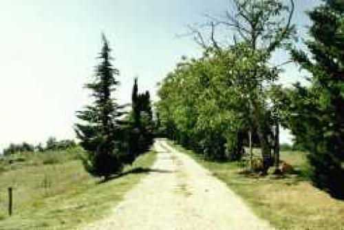 Ferien Doppelhaushälfte in Montaione#11