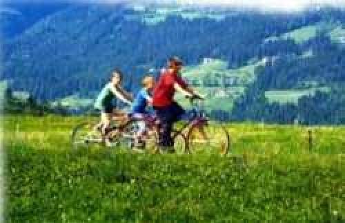 Ferienwohnungen in Dellach am Weissensee#12