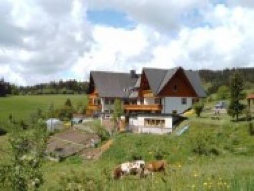 Ferienhaus Erlenmoos Wohnung 2#4