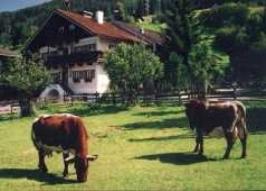 """Ferienwohnung """"Kitzsteinhorn"""" im Landhaus in Niedernsill"""