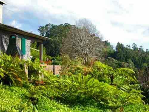 Casa Cedro in Funchal#10