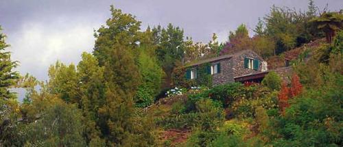 Casa Nogueira#13