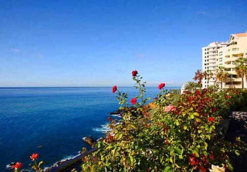 Hotel Regency Cliff#5