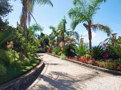 Quinta in Funchal#1