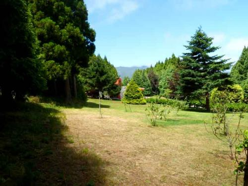 Gardens from Quinta Leonor#5