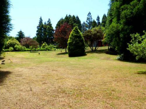Gardens from Quinta Leonor#6