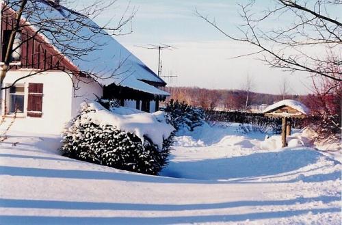 Ferienhaus mit Seezugang#1